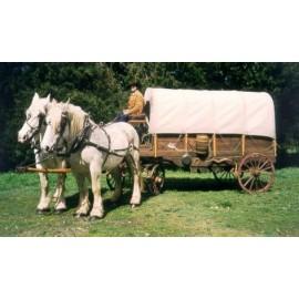Location charrette Western - Chariot baché Western - animation Westenr avec chevaux