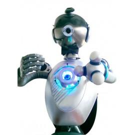 Animation robot humanoïde Lyon