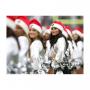 Pom Pom Girls Lyon - Pom Pom Girls Rhône-Alpes 69 - Danseuses pompom