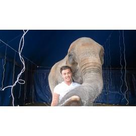 DOMPTEUR D'ELEPHANT*