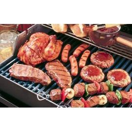 location-barbecue-plancha-a-gaz-lyon