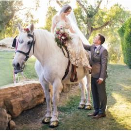 Location cheval mariage Lyon