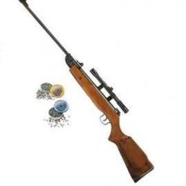 Tir à la carabine ou pistolet