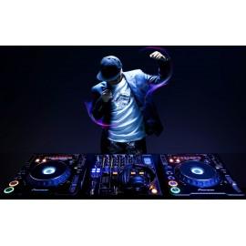DJ pour mariage haut de gamme à Lyon