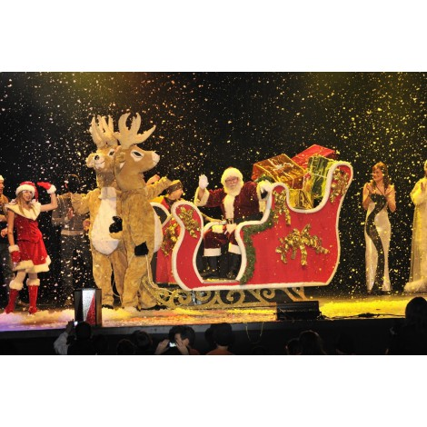 Le Père Noël et sa grande famille à Lyon
