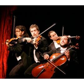 spectacle-avec-musiciens-burlesques-violonistes