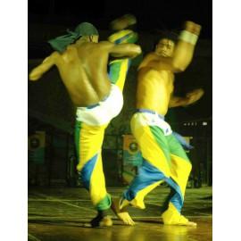 Démonstration Capoeira - Capoeiriste