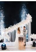 Son, lumières, effets spéciaux, audiovisuel mariage